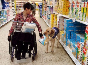 Service-Dog-Helping-to-Shop4