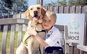 dogs-for-disabled-_1782050b