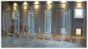 NEW_KENNEL_2009